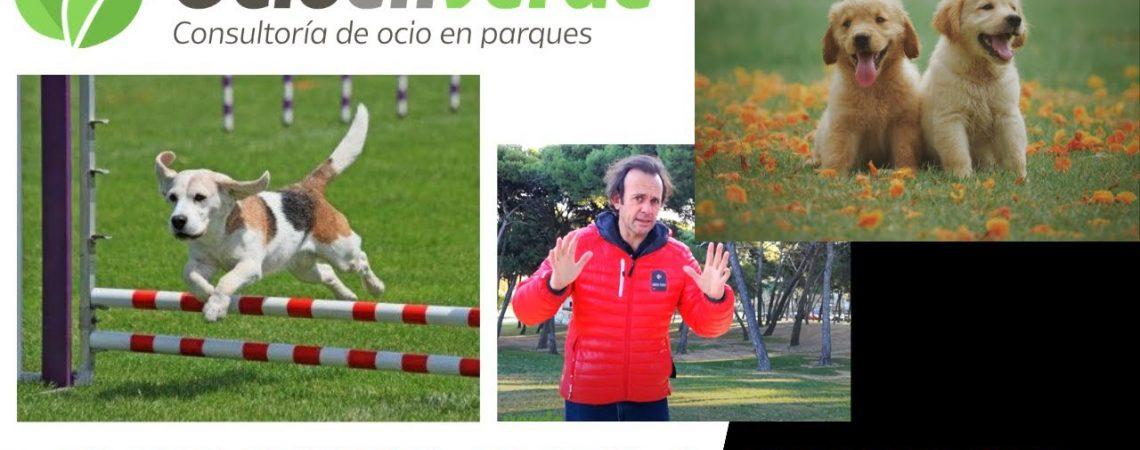 parques para perros